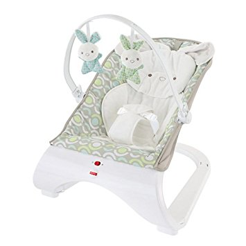 303ab8c9f Baby Gear Fisher Price Baby Bouncer